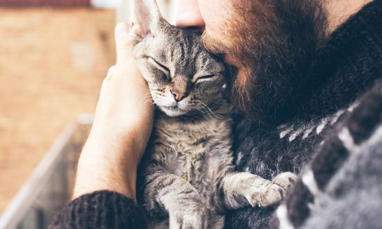 Abused Cats Find Home in Prison Program That Helps Inmates Learn to Show Love