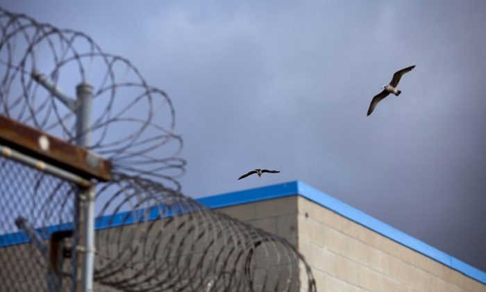 A bird flies over barbed wire on top of fences at the Richard J. Donovan Correctional Facility in San Diego, on Aug. 24, 2019. (Bloomberg via Getty Images)