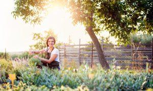 6 Healthiest Vegetables to Plant in Your Garden