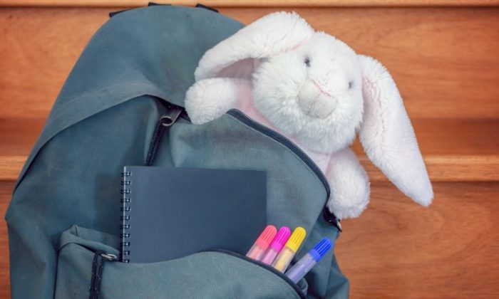 A small stuffed friend to accompany them on their school adventure may be just the extra comfort they need.  (Shutterstock)