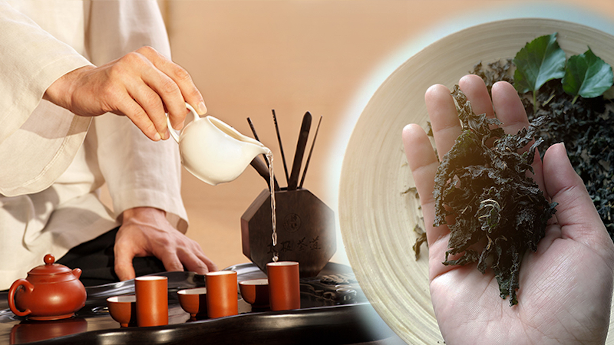 Traditional Chinese Tea: An Amazing Antidote That Fights Off Poisons in the Body