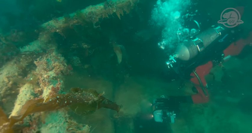 'Frozen in Time': Parks Canada Releases First Images of Arctic Shipwreck HMS Terror
