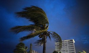 7-Year-Old Boy Becomes First Fatality of Hurricane Dorian: Report