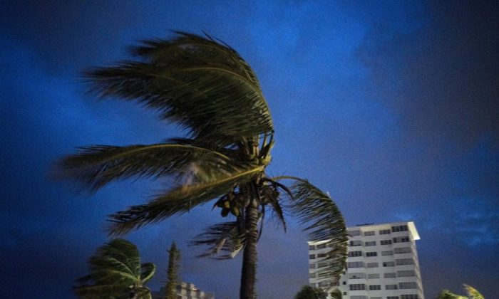 Strong winds move the palms of the palm trees at the first moment of the arrival of Hurricane Dorian in Freeport, Grand Bahama, Bahamas, on Sept. 1, 2019. (Ramon Espinosa/AP Photo)