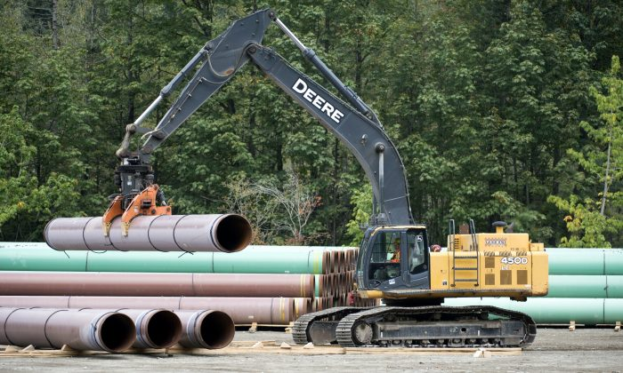 Pipeline pipes are seen at a Trans Mountain facility near Hope, B.C., on Aug. 22, 2019. (The Canadian Press/Jonathan Hayward)