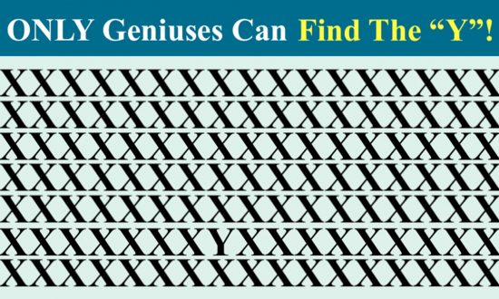 Brainteaser: Can You Find That Cleverly Hidden 'Y' in Under 30 Seconds?