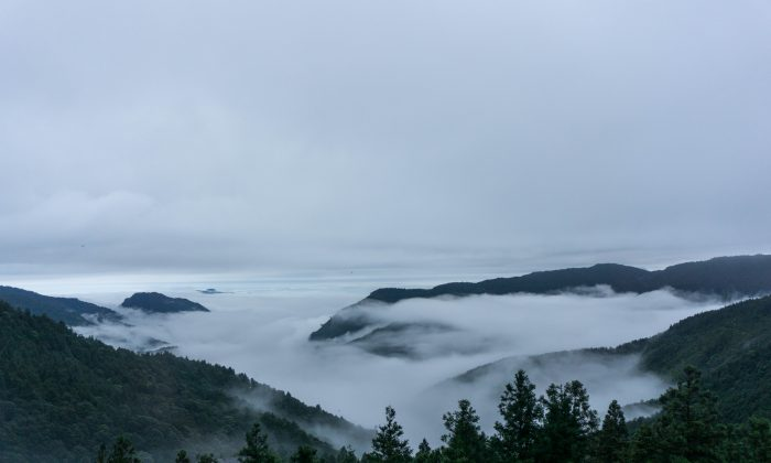 The elusive sea of clouds.  (Crystal Shi)