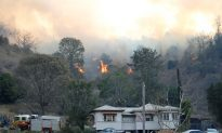 Children Rebuked for Starting QLD Fires