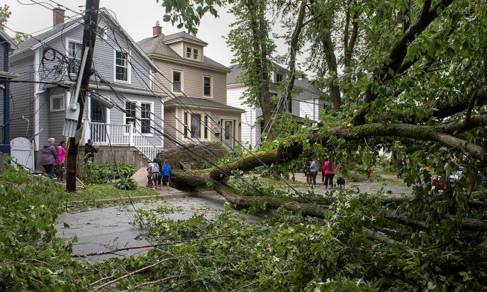 A street is blocked by fallen trees in Halifax on Sept. 8, 2019. (Andrew Vaughan/The Canadian Press via AP)