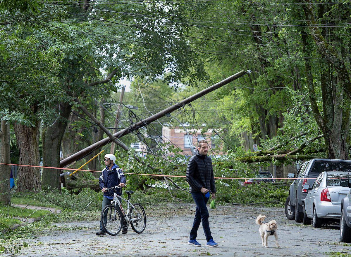 A street is blocked by fallen trees