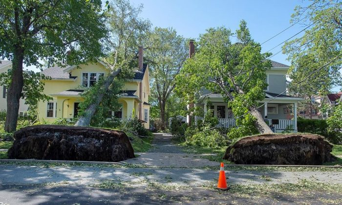 Two fallen trees rest on neighbouring houses in Halifax on Sept. 8, 2019. Hurricane Dorian brought wind, rain, and heavy seas that knocked out power across the region, left damage to buildings and trees as well as disruption to transportation. (The Canadian Press/Andrew Vaughan)