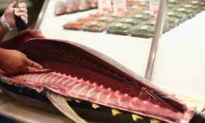 FDA Investigation Prompts Tuna Recall in Multiple States