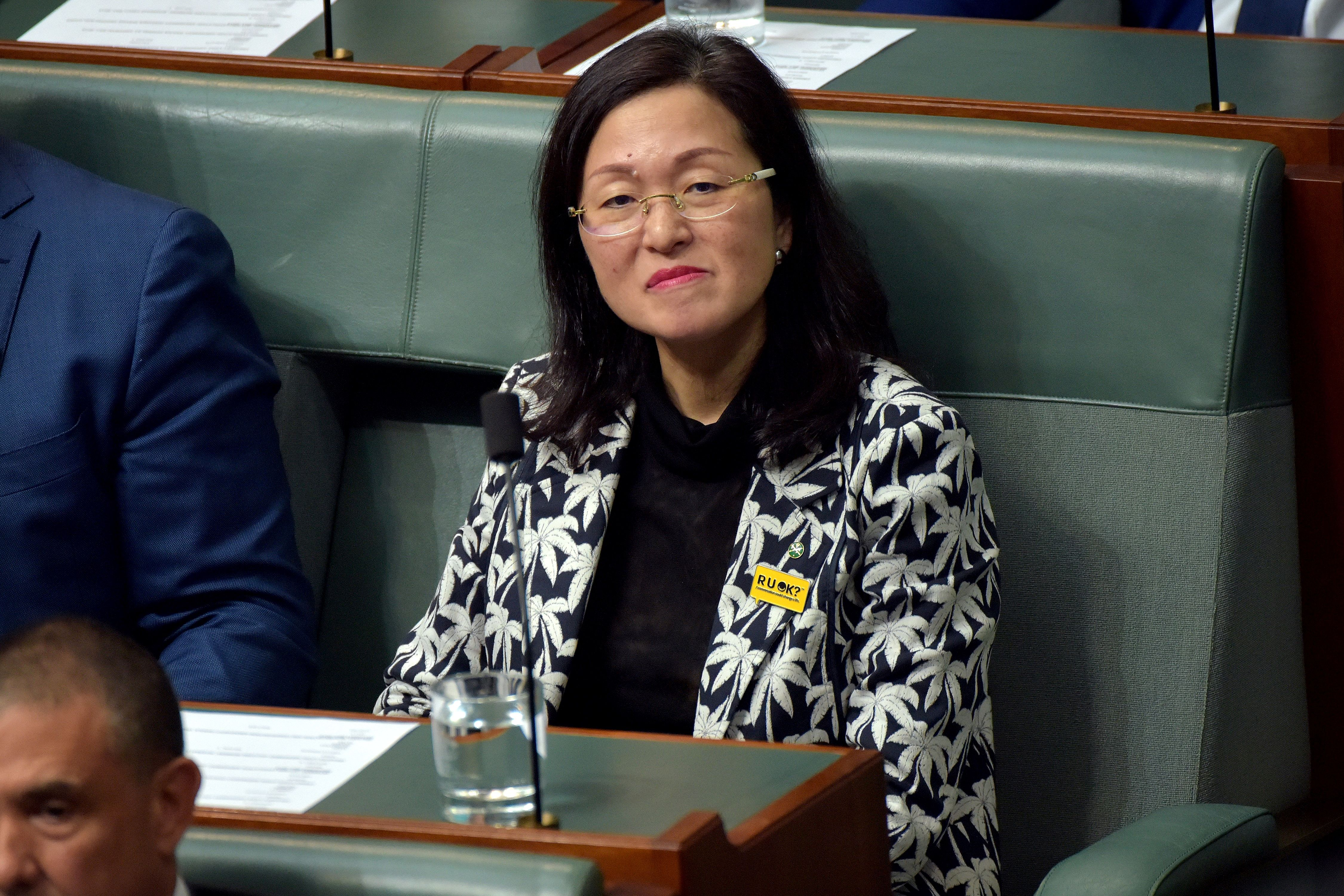Why Gladys Liu Must Answer to Parliament About Alleged Links to the Chinese Government
