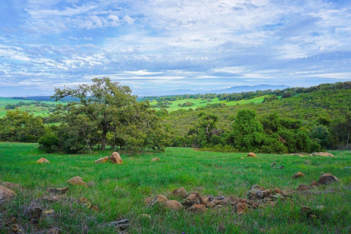 Tourism Santa Rosa Plateau