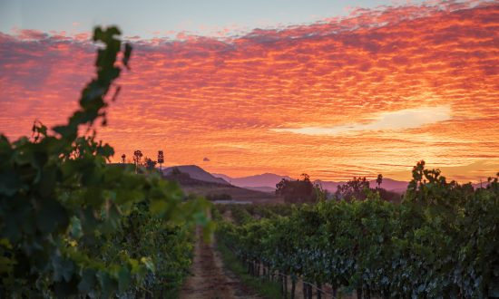 Temecula: The Other California Wine Country