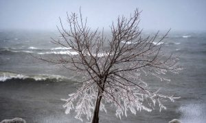 Average Fall, Cold Winter Ahead, Weather Network Predicts