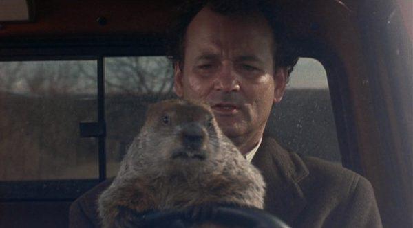 man and groundhog