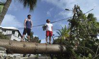 Bermuda Avoids Major Damage From Hurricane Humberto, Cleanup Crews Get to Work