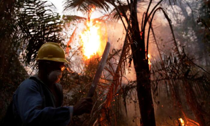 A man fights wildfires in Santa Monica near Concepcion, Bolivia, Sept. 21, 2019. (David Mercado/Reuters)