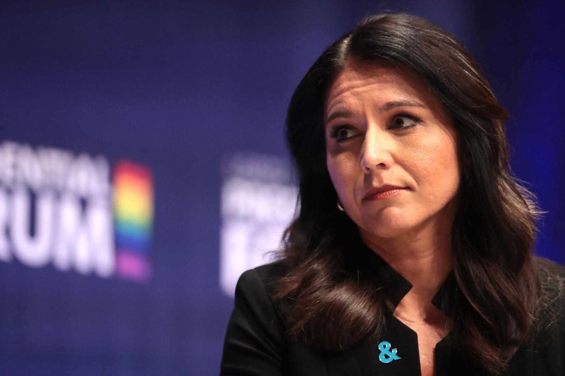 2020 Democrat Candidates Defend Tulsi Gabbard Over 'Russian Asset' Accusations