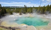 Yellowstone Area Experiences 193 Earthquakes in a Month: Report