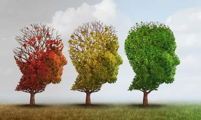 Dementia is a complex disease with complex causes that requires a multifaceted and highly personalized treatment.(Lightspring/Shutterstock)