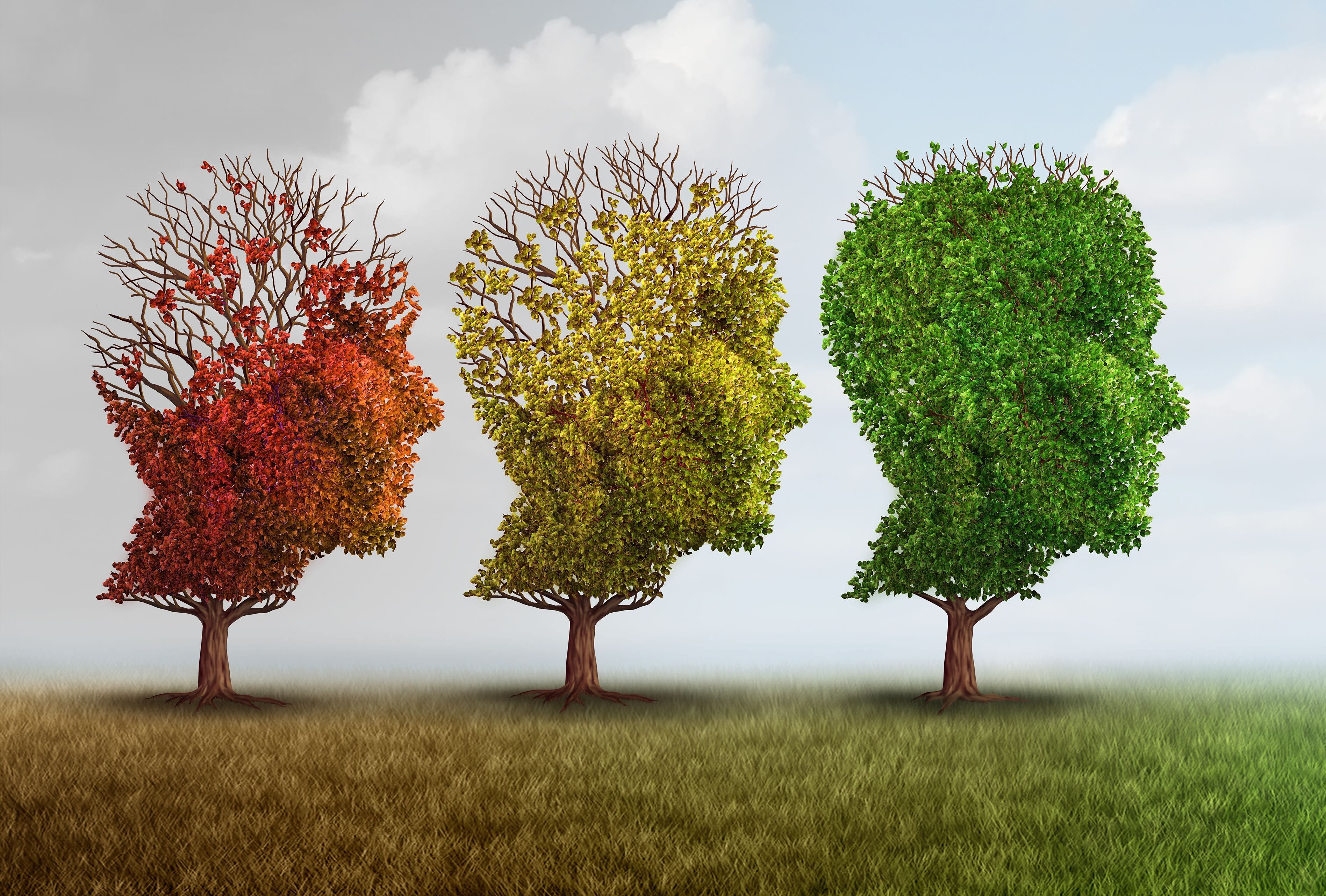 Can Dementia Be Reversed?