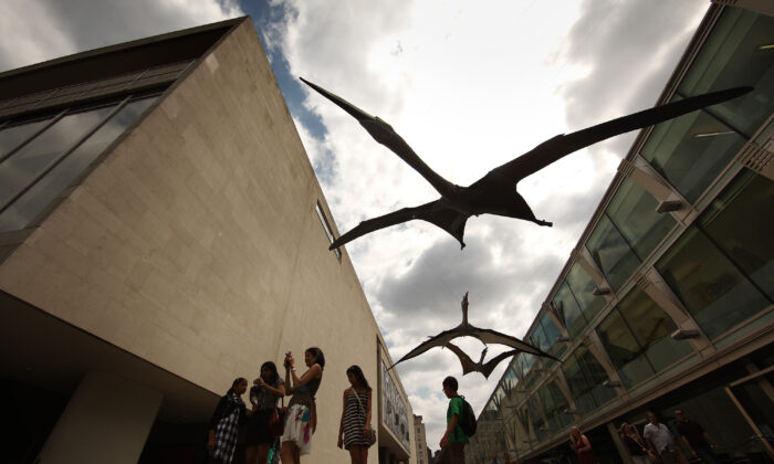 Models of giant predatory reptiles know as pterosaurs hang outside the Royal Festival Hall in London, England, on June 21, 2010. (Peter Macdiarmid/Getty Images)