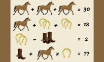Can You Solve This Horse Algebra Problem That Has Sparked Debate?
