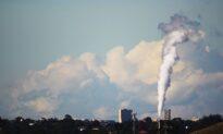 Australian Labor MP Wants Party to Drop Carbon Target