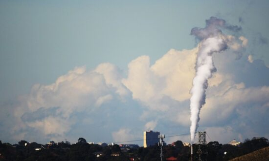 Australian Labor MP Wants Party to Drop Carbon Target