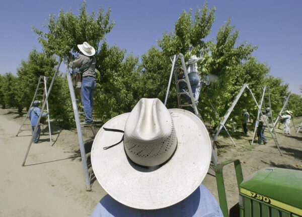 California Pesticide Ban