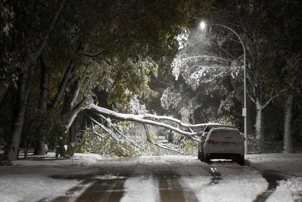 Power Out, Highways Closed: Blast of Early Winter Cripples Southern Manitoba