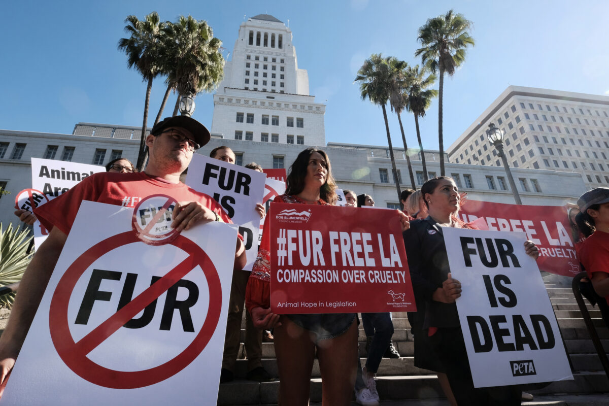 protest against fur and animal cruelty