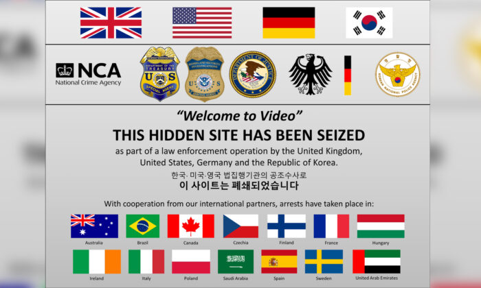 The seized Welcome to Video website in an image courtesy of the Department of Justice. (DOJ via Reuters via)