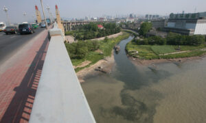 China Considers 10-Year Fishing Ban in Yangtze River Due to Overfishing