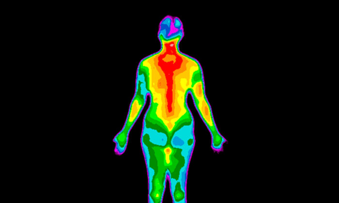 Thermography attempts to decipher what is happening inside the body by closely examining its heat signature. (Anita van den Broek/Shutterstock)