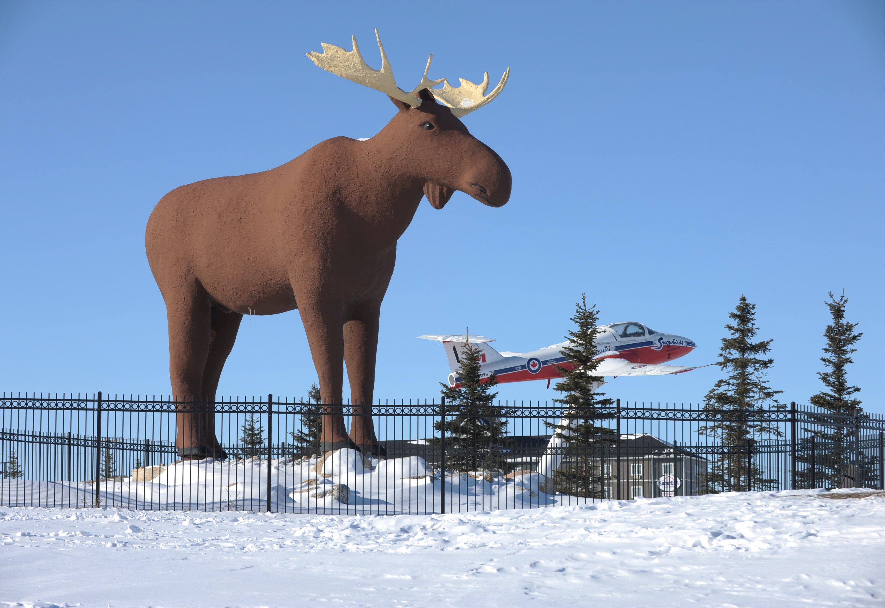 Quebec Town's Moose Statue Won't Seek to Supplant Moose Jaw's Famous Mac