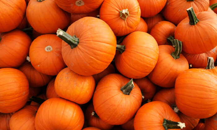 Come fall, pumpkins are ubiquitous. In the kitchen, their sweet, creamy flesh works well with a wide range of dishes and flavors. (Vewfinder/Shutterstock)