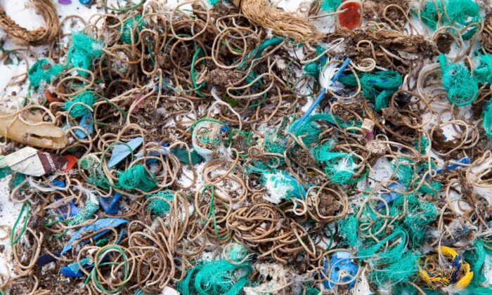 Elastic bands and fishing waste collected