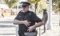 Man Found Guilty of Attempting to Murder Edmonton Police Officer, 4 Pedestrians