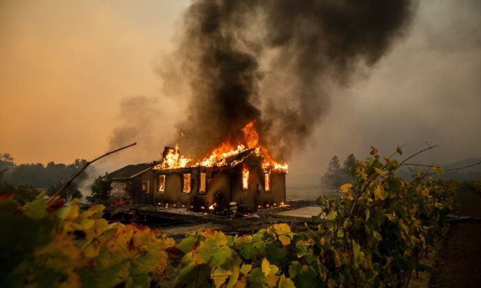 Vines surround a burning building as the Kincade Fire burns through the Jimtown community of unincorporated Sonoma County, Calif., on Oct. 24, 2019. (Noah Berger/AP Photo)