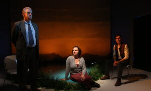 Theater Review: 'Molly Sweeney'
