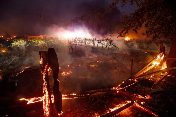 A fence burns in front of a vineyard