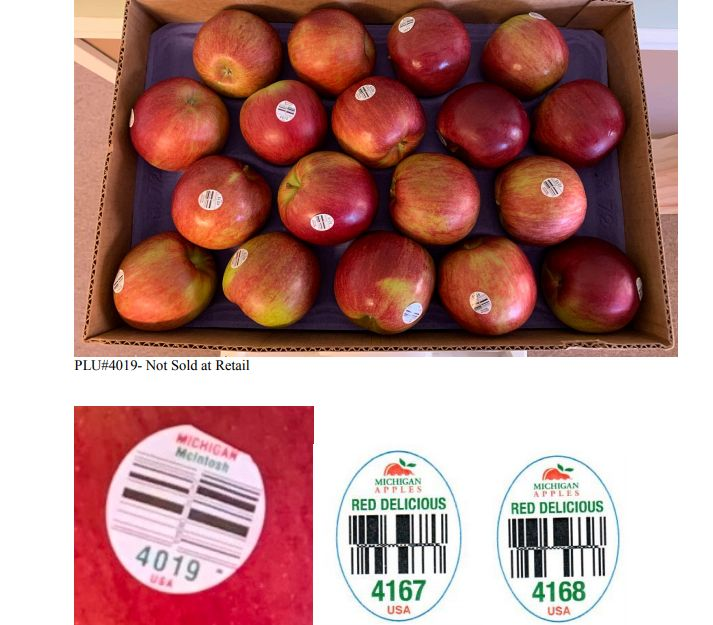 Apples shipped to Florida recalled due to possible listeria contamination