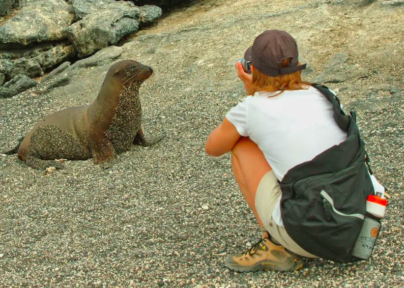 The Galapagos Islands: Like No Other Place in the World