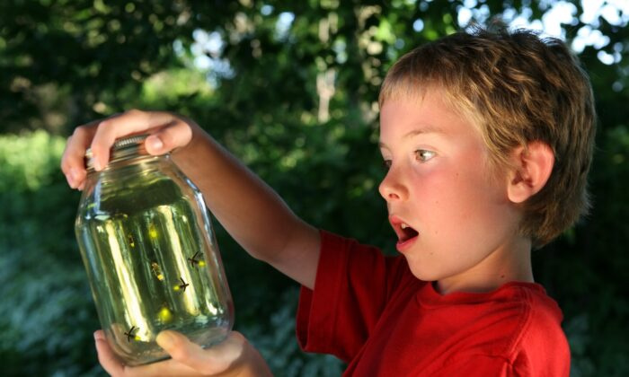 Help your child experience of the wonder of nature to break them out of a self-absorbed mindset. (Suzanne Tucker/Shutterstock)