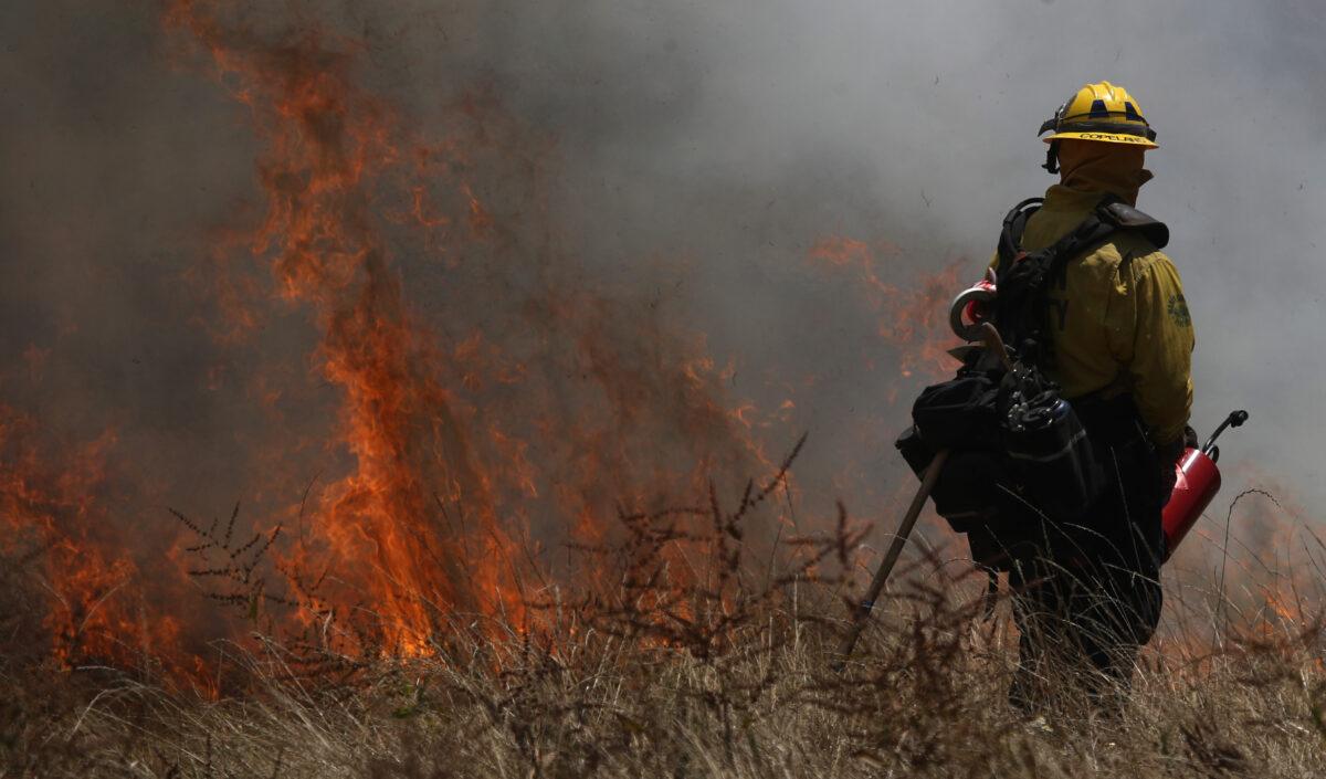 Where Do California's Wildfires Actually Come From?