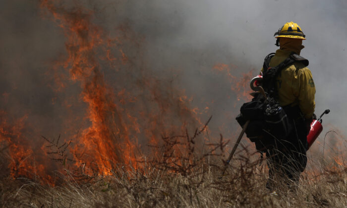 A Marin County Fire Department firefighter stands near burning brush during a controlled burn training in San Rafael, Calif., on June 19, 2019. (Justin Sullivan/Getty Images)