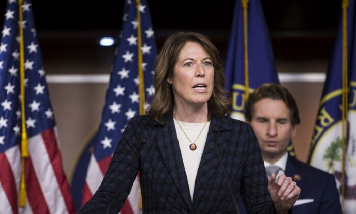 """Rep. Cindy Axne (D-IA) speaks during news conference discussing the """"Shutdown to End All Shutdowns (SEAS) Act"""" on January 29, 2019 in Washington, DC. Also pictured is Rep. Dean Phillips (D-MN).  (Photo by Zach Gibson/Getty Images)"""
